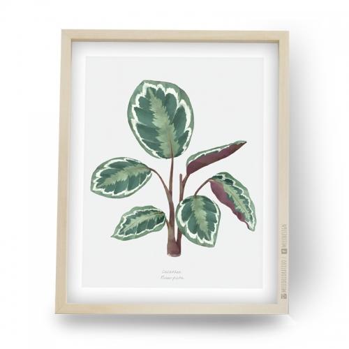 Cuadros decorativos, cuadros modernos, Nordicos, Hojas, Plantas en Meee Deco