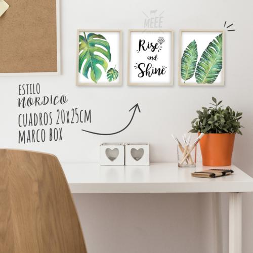 cuadros decorativos plantas, botanico, hojas, rise and sine